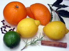 Ingredients for Citrus simmer pot